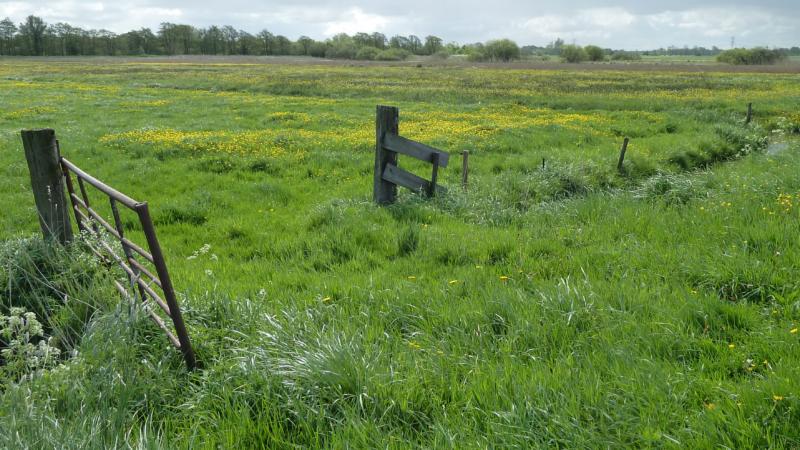 De achtertuin van Utrecht